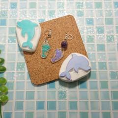 プラ板/イルカはんこ/イルカ/消しゴムはんこ/ハンドメイド シルエットイルカの消しゴムはんこをプラ板…(1枚目)