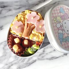 桜/幼稚園弁当/幼稚園/お弁当/フォロー大歓迎/わたしのごはん ついに幼稚園最後のお弁当です。 長男から…(1枚目)
