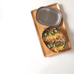 お弁当/おべんとう/ランチボックス/のっけ弁当/鶏そぼろ/LIMIAごはんクラブ/... Today's lunchbox  鶏そ…