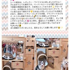 わんこ/ペット雑貨/カントリーインテリア/カントリー/収納/犬/... こちらはオーダー品(❁•ᴗ•❁)  可愛…