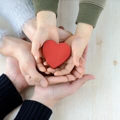 生活の知恵/家事/料理/グルメ/減塩/がん保険/...