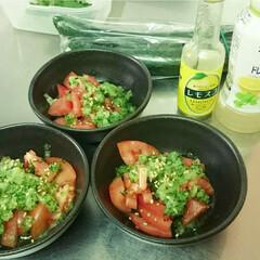 サラダ/夏野菜/トマトサラダ/ワンパターンメニュー/夏レシピ/キッチン トマト&きゅうりのワンパターンな組み合わ…