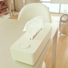 ティッシュボックス/除菌/ダイニング/片付け/整理/収納 我が家で使っているティッシュボックスはア…