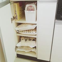 キッチン/お米/収納/整理/片付け/備蓄 我が家のお米のストックです。右側の細長い…