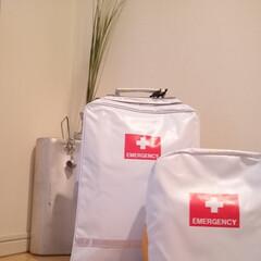防災リュック/非常食/災害時の備え/東日本大震災 下の子の防災リュックを大きいサイズにしま…