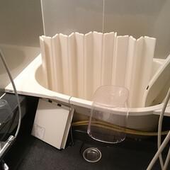 大掃除/バスルーム/浴室/掃除/掃除道具 浴槽のエプロンの中を掃除しました。 掃除…