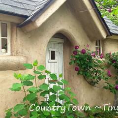 小屋/小さな家/カントリータウン/住まい/暮らし/輸入住宅/... カントリータウンのタイニーハウス