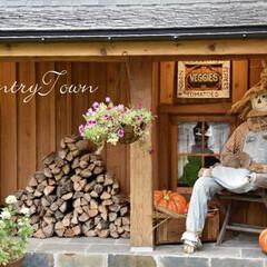 かかし/ハロウィン/住まい/暮らし/かわいい家/輸入住宅/... すっかり秋ですね。当社のスタッフ「かかし…