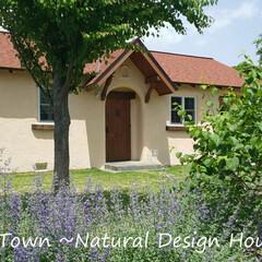 住まい/暮らし/かわいい家/輸入住宅/デザイン住宅/ナチュラル/... カントリータウンのナチュラルデザインハウス