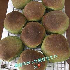 手作りパン/よもぎ/北海道産小豆 義母はパン作りが趣味です。 これはよもぎ…