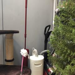 掃除機収納 プレイルームにお掃除用品置いてます。 ダ…