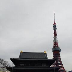 東京タワー/寺/はじめてフォト投稿 お寺と東京タワー🗼
