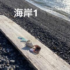 桜餅/海岸/海/シーグラス こまる地方では 小、中学生の休業が決まり…(3枚目)