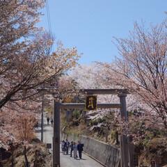はじめてフォト投稿/風景 奈良県 吉野