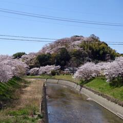 はじめてフォト投稿/風景 斑鳩町  竜田川・三室山