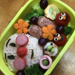 弁当 1歳7ヶ月の息子。最近から保育園に通い始…(1枚目)