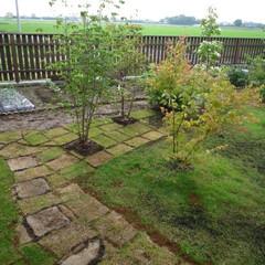 「初めて〇〇作ってみました!」/リミアな暮らし 田舎に移住して、庭をすべて手造りで作りま…(1枚目)