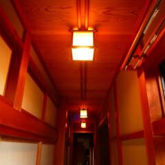 「我が家の照明」/我が家の照明 廊下の照明です。 淡い光のため、短い距離…