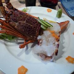 「#おでかけワンショット」/おでかけワンショット 旅行中に食べた伊勢海老です。思いっきり贅…