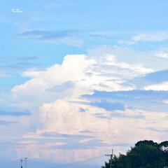 自然/空/暮らし/フォロー大歓迎 今日の空💕 不思議な雲が広がってた☁️☁️