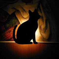 我が家の照明 カレンダーのおしゃれな絵の端に百均のネコ…(1枚目)