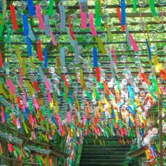 夏/風鈴/夏のお気に入り 風鈴でいっぱいのお寺 お気に入りのお出か…