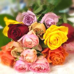 ドライフラワー/ドライフラワーのある暮らし/雑貨 以前アップした 薔薇だけにバラ売りの薔薇…