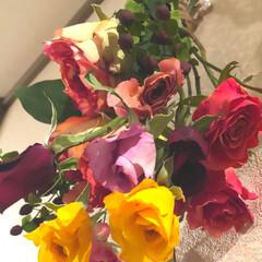 ドライフラワー/ドライフラワーのある暮らし/雑貨 以前アップした 薔薇だけにバラ売りの薔薇…(3枚目)