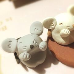 粘土細工/クレイクラフト/雑貨/ハンドメイド/干支グッズ/2020年/... 真似っこネズミさん  🐭  白いネズミさ…
