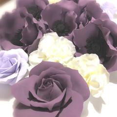 粘土細工/クレイクラフト/クレイフラワー/雑貨/ハンドメイド 紫 咲きました    マスク 😷   後…