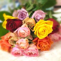 フレッシュフラワー 一本 100円 純国産薔薇   🌹✨✨ …