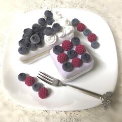 粘土細工/クレイクラフト/雑貨/ハンドメイド ブルーベリー & ラズベリー の ケーキ…