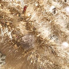 クリスマスインテリア/クリスマスツリー/セリア/100均/雑貨 2メートルのツリー   🎄✨✨ 処分して…