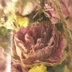 ボトルフラワー/ドライフラワー/ハンドメイド 大切な方から託された 珍しい薔薇の花 ボ…(2枚目)