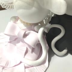 クレイフラワー/クレイクラフト/粘土細工/家族/マルプー犬 小さい小さい Calla lily  (…