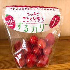 プチトマト/野菜/可愛い なんて可愛いネーミング💕脱帽です❗️ 食…