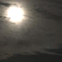 お月様 満月の次の日