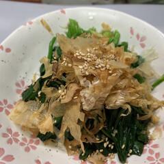 夕飯/ワンタンスープ/かき玉/白ごま/かつお節/ほうれん草/... 昨日の夕飯  八宝菜で 具は 11種。 …(2枚目)