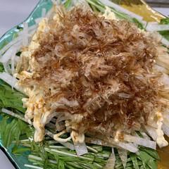 夕飯/片栗粉/はちみつ/しょうが/鶏もも/鶏ガラスープの素/... 本日の夕飯   大根、水菜、ツナ、かつお…(1枚目)