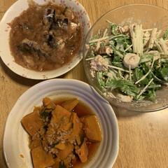 そぼろ煮/青唐辛子そばつゆ/ツナ/ちくわ/水菜/いわしの天ぷらの甘辛煮/... 本日の夕飯  かぼちゃのそぼろ煮  かぼ…