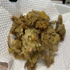 夕飯/天ぷら/舞茸/からし醤油 昨日の夕飯   かき菜のからし醤油和え …(2枚目)