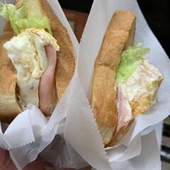 ラップ/クッキングシート/しょうゆ/マヨネーズ/レタス/塩こしょう/... 最近の朝の定番。   6枚切りの食パンを…(1枚目)