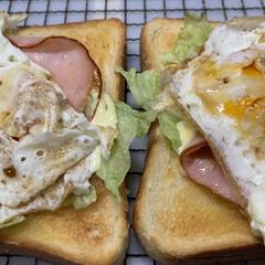 ラップ/クッキングシート/しょうゆ/マヨネーズ/レタス/塩こしょう/... 最近の朝の定番。   6枚切りの食パンを…(2枚目)