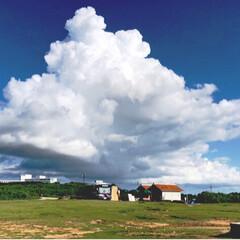 夏休み/キャンパス/青空/景色/夏空/フォロー大歓迎/... 夏の空は自然のキャンパスに早変わりします…