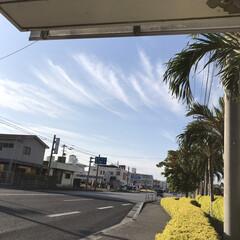 フォロー大歓迎/Instagram/sky/photography/Photo/写真/... バス停から見える青空です。 青空は心を元…