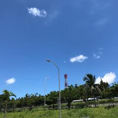 夏休み/あおぞら/青空/夏空/夏の思い出/夏模様 今年の夏も暑い夏です。しかし終わりが近づ…