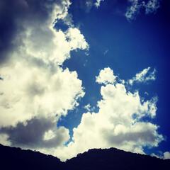 フォローバックします/いいね/Instagram/写真好き/青空/自然/... 今日は青空が見えました。 今年、最後の夏…(1枚目)