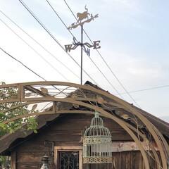 庭/小屋 庭の小屋に風見鶏?風見猫付けてみました