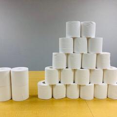 雑貨/トイレ/トイレットペーパー/トイレグッズ/丸富製紙/超ロングなが〜く使える5倍巻き25.../...