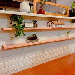 DIY/キッチン/インテリア 壁紙を変えて、棚を2段付けました! 2段…(1枚目)